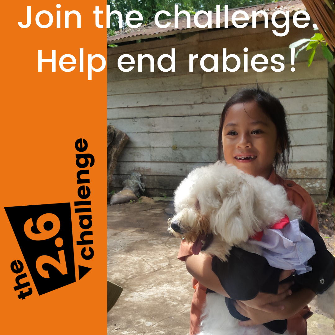 Help to save children and animals by joining the 2.6 challenge