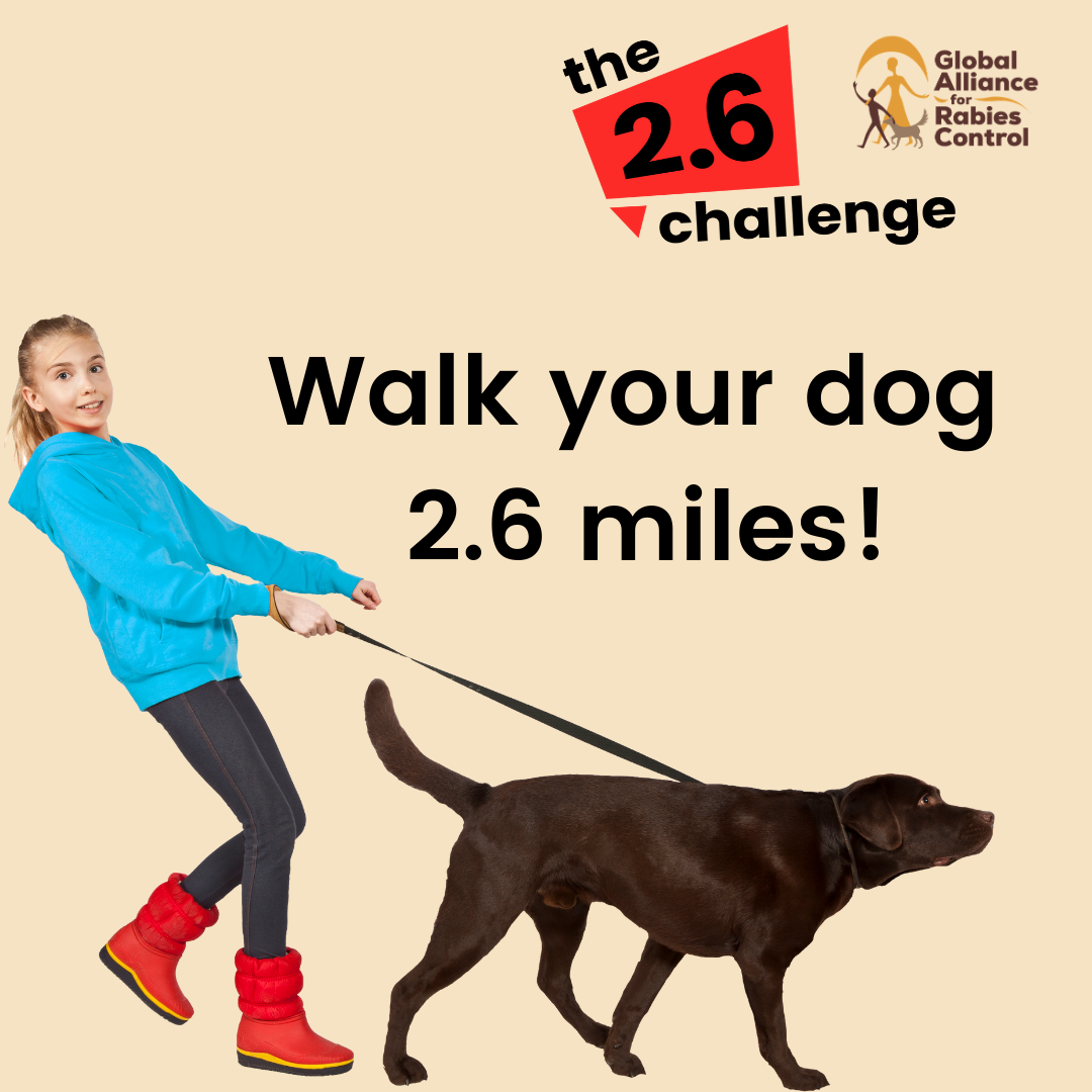 Walk your dog for the 2.6 challenge