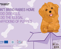 IZSVE table mats to raise awareness against illegal puppy trafficking in Europe, supported by GARC.