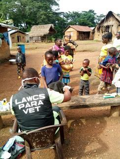 Liberia Animal Welfare & Conservation Society, GARC World Rabies Day awards nominee activities 2020, including vaccination.