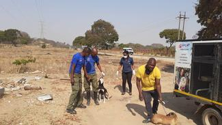Zimbabwe National Society for the Prevention of Cruelty to Animals (ZNSPCA), GARC World Rabies Day award shortlisted demonstrating their dog population management activities.
