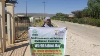 Somali Female veterinarian doctor involving the world rabies day control