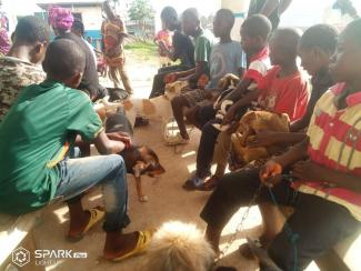 Rabies vaccination exercise