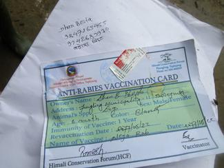 Our vaccination card.