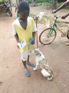 one little boy and his dog proudly holding his vaccination certificate and some Filtabac cream for his dog's ears