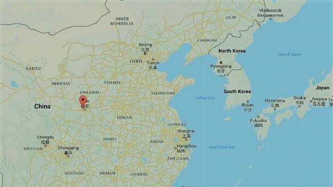 Vaccine Fails To Save Chinese Rabies Victim Leading To