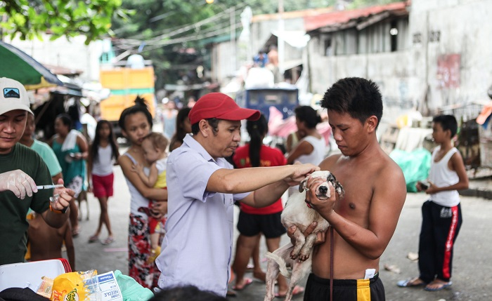 Dog vaccination station in The Philippines, 2016. Photo: Gelroy Conception  and GARC
