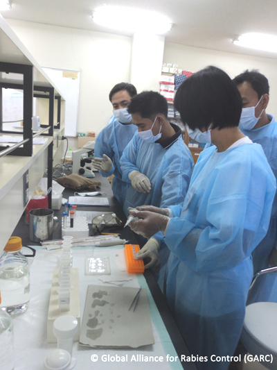 Garc Holds Rabies Diagnostic Laboratory Training In The Philippines
