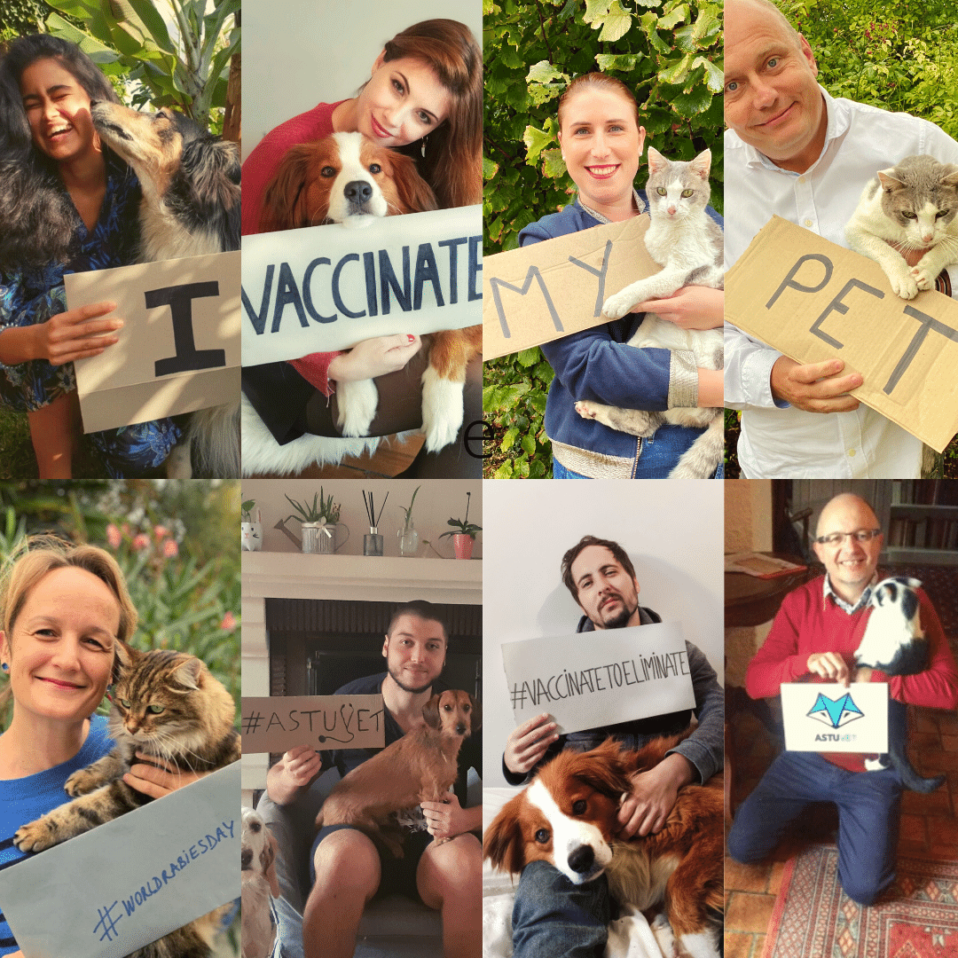 A photo collage done to celebrate GARCs World Rabies Day 2020.