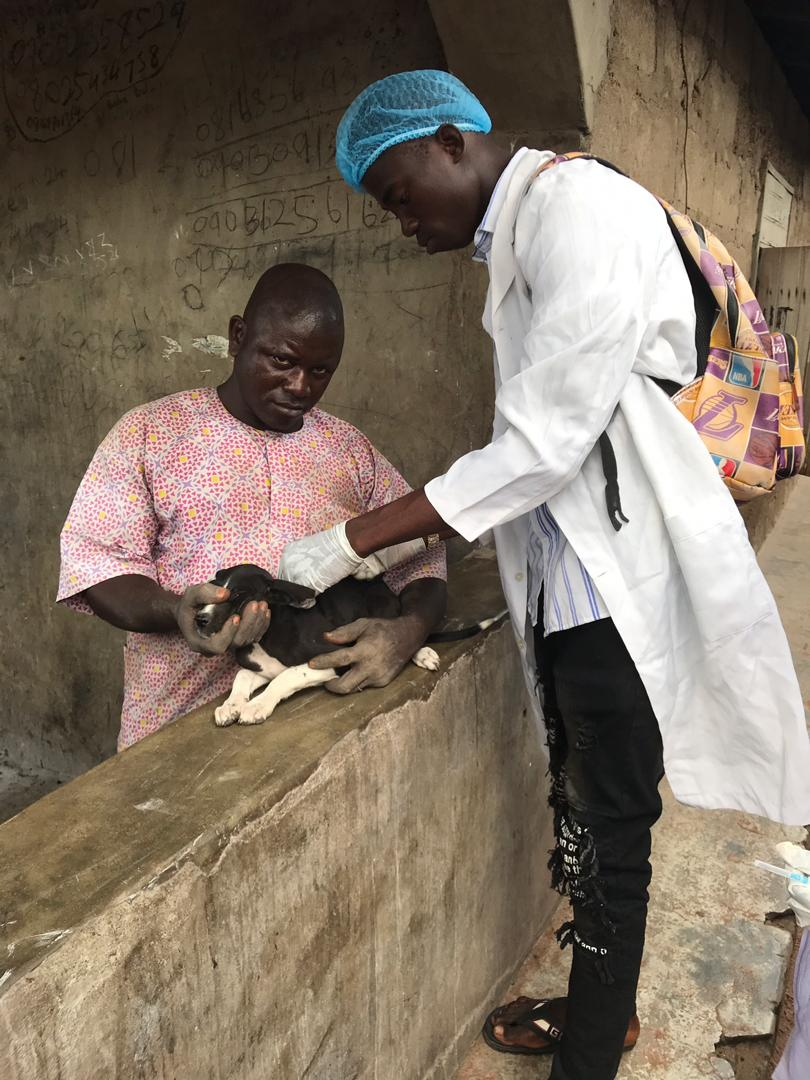 A vet vaccinates a dog free of charge in celebration of GARCs World Rabies Day 2020.